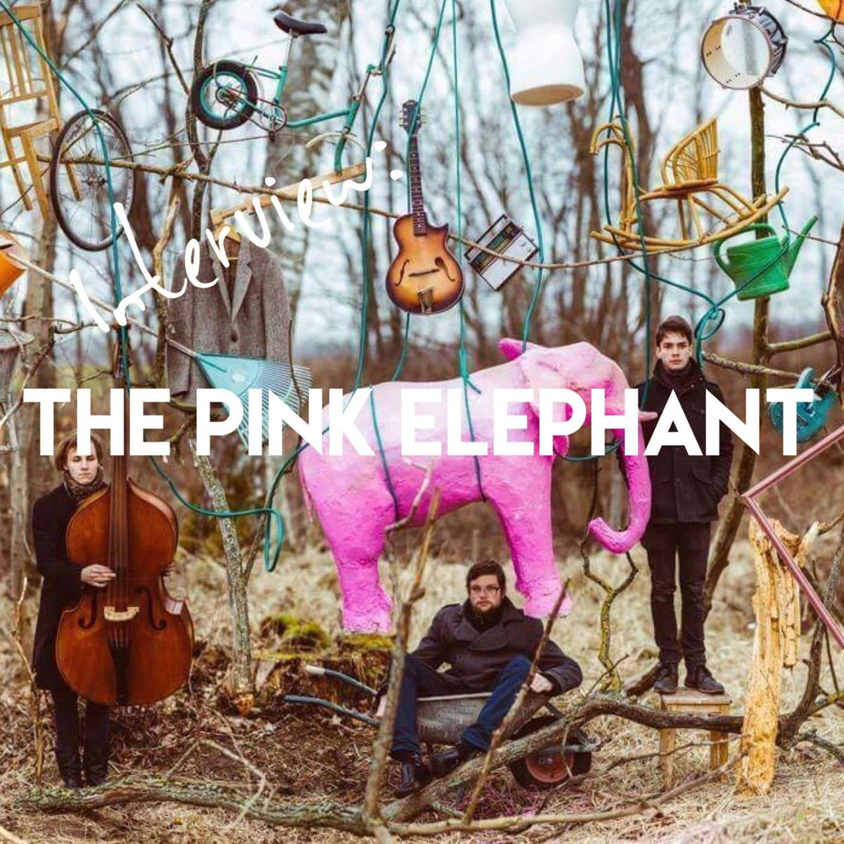Interview: The Pink Elephant from Latvia