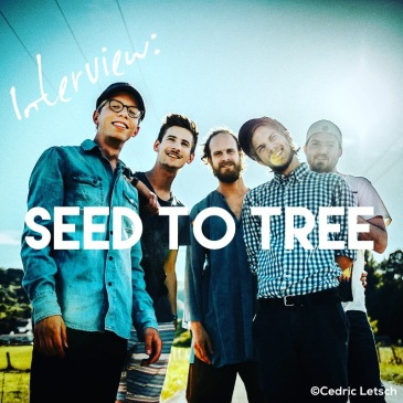 Interview with Seed to Tree